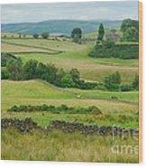 Green Hills Of Galloway Wood Print by John Kelly