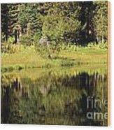 Green In Summit Lake Wood Print