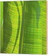 Green Leaf Wood Print by Setsiri Silapasuwanchai