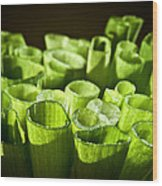 Green Onions Wood Print