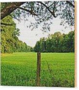 Green Pasture Wood Print