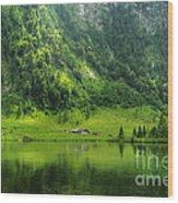 Green Reflections Wood Print