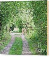 Green Road Wood Print