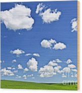 Green Rolling Hills Under Blue Sky Wood Print