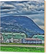 Green Roofed Barn-hdr Wood Print