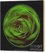 Green Rose On Black Wood Print