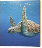 Green Sea Turtle Wood Print by James R.D. Scott
