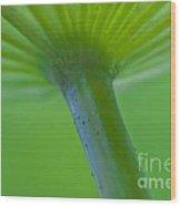Green Shape Wood Print by Heiko Koehrer-Wagner