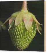 Green Strawberry Wood Print