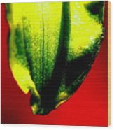 Green Tear Wood Print