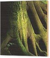 Green Trunk Wood Print