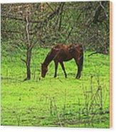 Greener Grass Wood Print