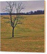Greenfieldtree Wood Print