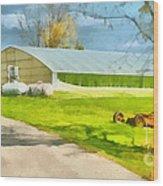 Greenhouses Wood Print