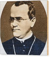 Gregor Mendel, Father Of Genetics Wood Print