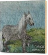 Grey Horse Wood Print by Nicole Besack