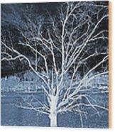 Grey Magical Tree Wood Print