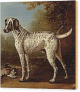 Grey Spotted Hound Wood Print