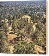 Griffith Park Wood Print
