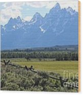 Grizzly Country Wood Print