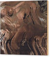 Grotte Magdaleine Inspiration Region Ardeche France Wood Print