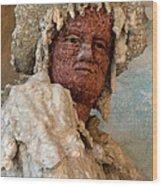 Grotto Buontalenti Wood Print