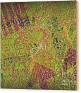 Grunge Background 4 Wood Print