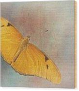 Grunge Julia Dryas Wood Print
