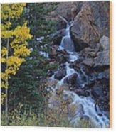 Guanella Falls Wood Print
