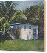 Guest House In Aguada Wood Print