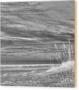 Gulf Breeze Wood Print