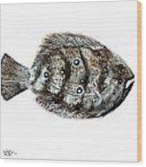 Gulf Flounder Wood Print