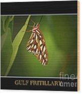 Gulf Fritillary 2 Wood Print