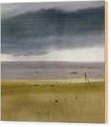 Gulf Of Finand Wood Print
