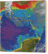 Gulf Of Mexico Dead Zone Wood Print by Science Source