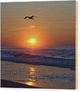 Gull Coast Wood Print