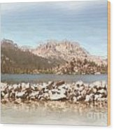 Gull Lake Wood Print