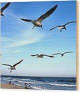Gulls Wood Print by John Loreaux