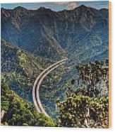 H-3 From The Aiea Loop Trail Wood Print