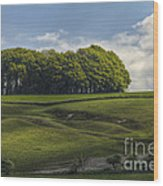 Hackpen Hill Wood Print