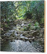 Haiku Stream Wood Print