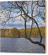 Hall Lake In Autumn No 0118 Wood Print