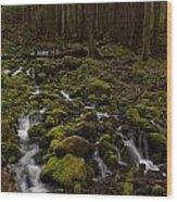 Hall Of The Mosses Wood Print