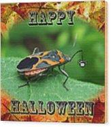 Halloween Greeting Card - Box Elder Bug Wood Print