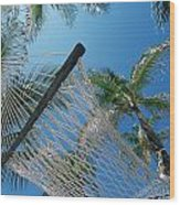 Hammock And Palm Tree, Great Barrier Wood Print