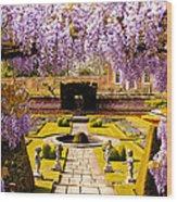 Hampton Court Gardens IIi Wood Print