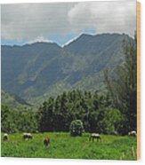Hanalei Horses Wood Print