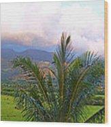 Hanalei Panorama Kauai Wood Print