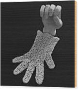 Hand And Glove Wood Print by Barbara St Jean