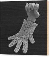 Hand And Glove Wood Print